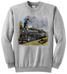 Reading T1  Sweatshirt [44]
